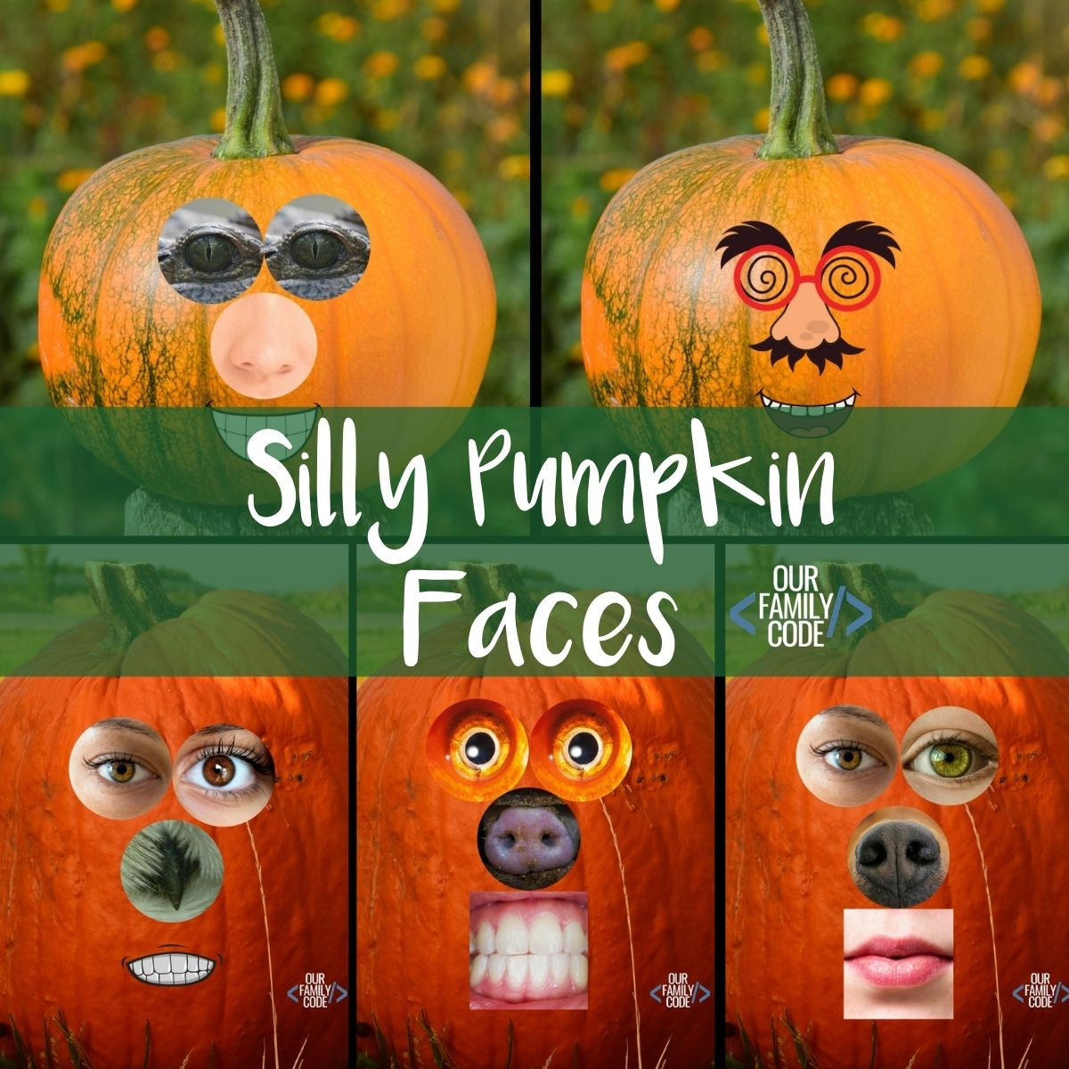 Learn About Faces And Emotions With This Silly Pumpkin Faces Activity
